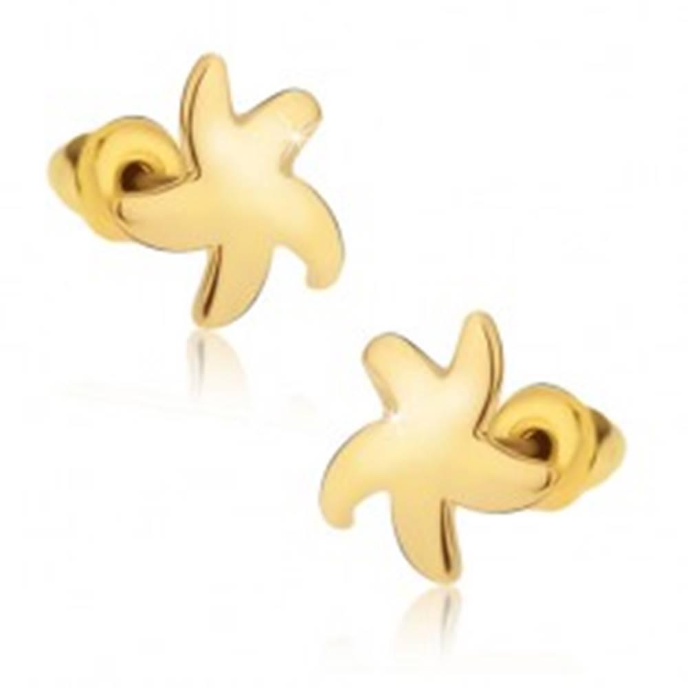 Šperky eshop Puzetové náušnice, lesklá hviezdica zlatej farby