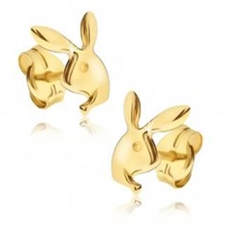 Náušnice v žltom 14K zlate - lesklá hlava zajačika