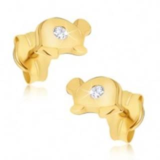 Zlaté náušnice 585 - malé lesklé korytnačky s čírym kamienkom na pancieri