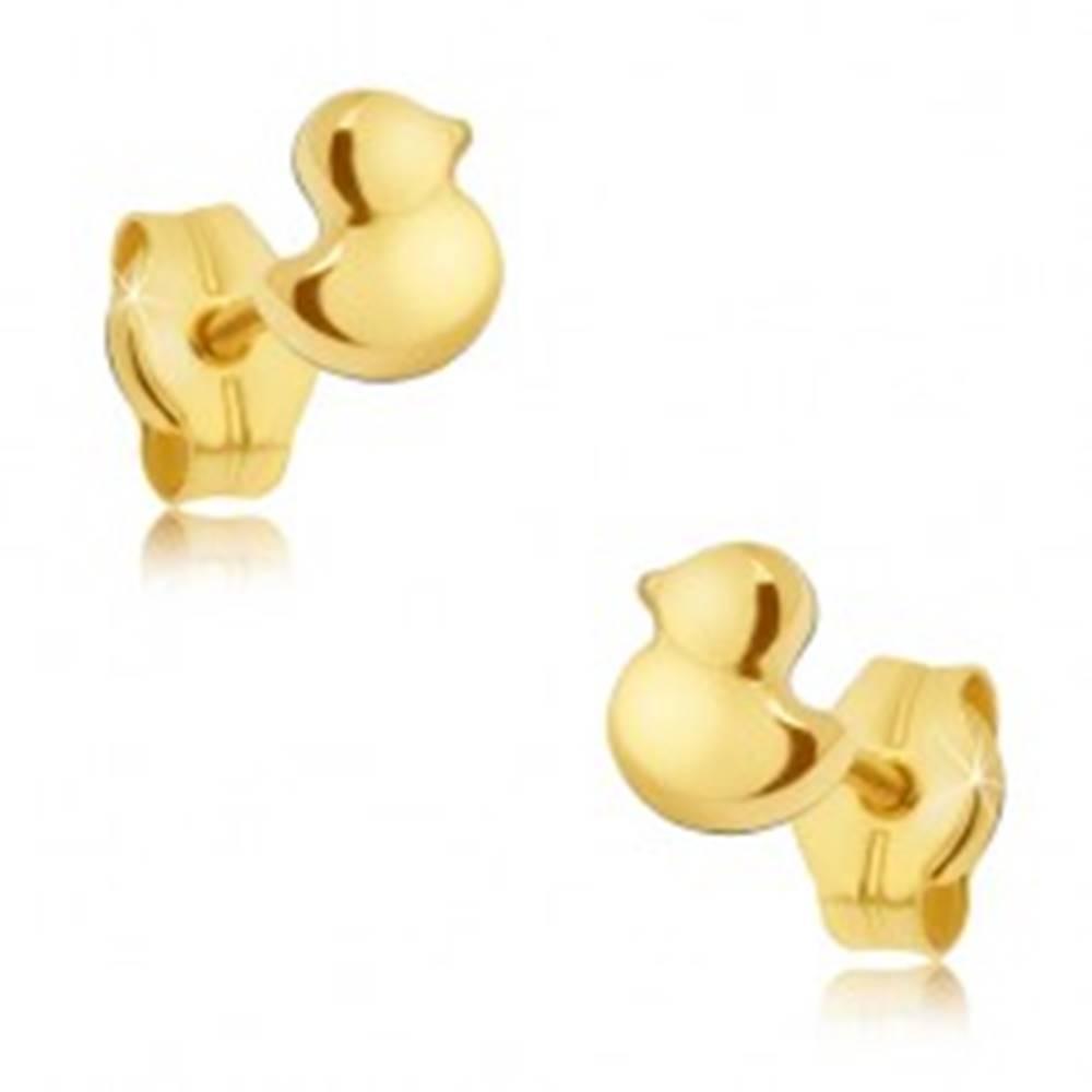 Šperky eshop Zlaté puzetové náušnice 585 - maličké ligotavé kačičky