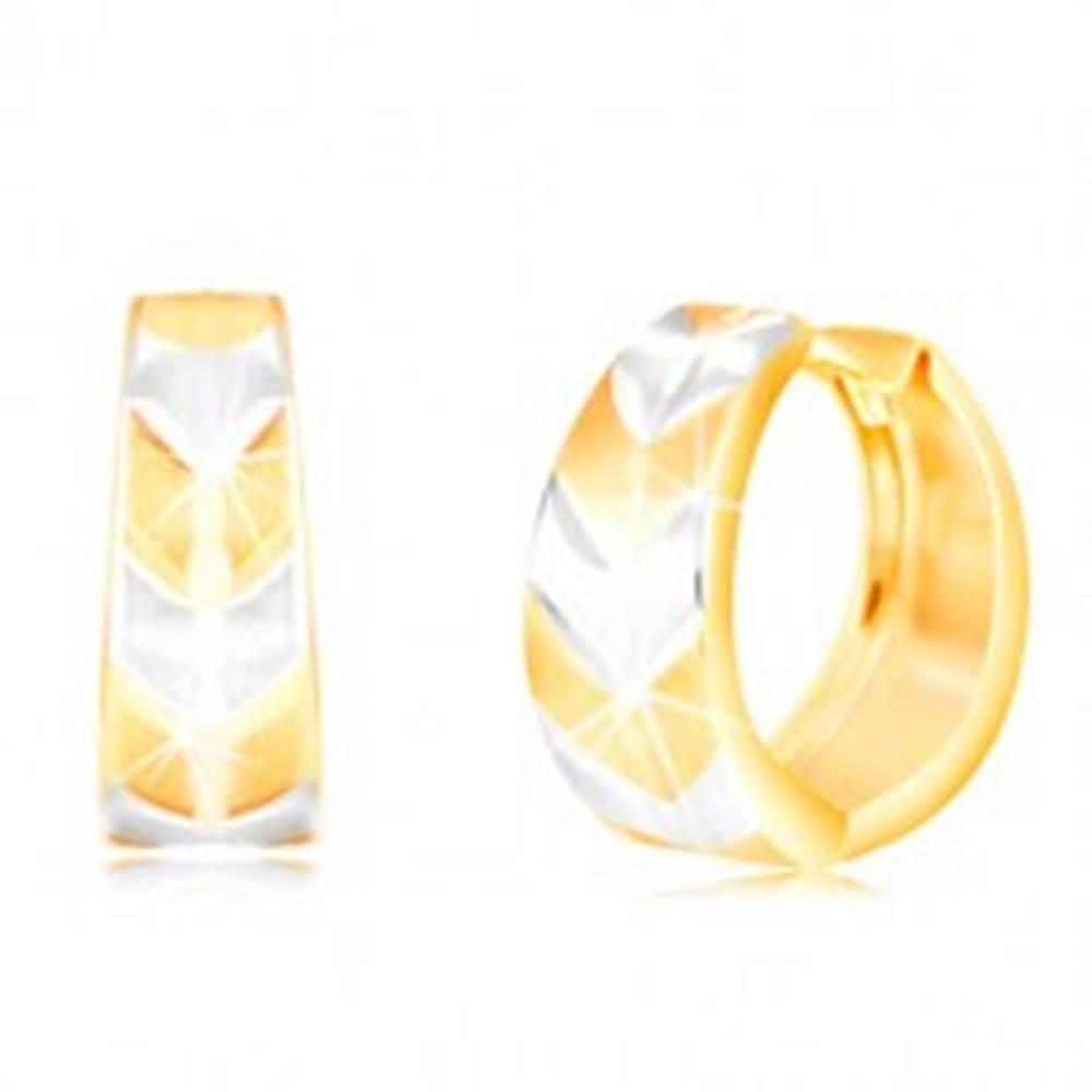 Šperky eshop Okrúhle náušnice v 14K zlate - krúžok s matným dvojfarebným vzorom V