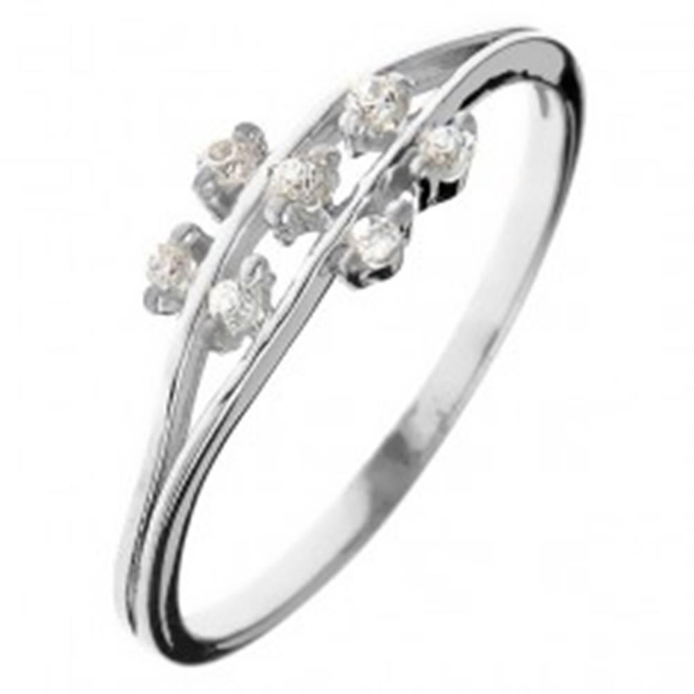 Šperky eshop Prsteň zo striebra 925 - drobné zirkónové kvietky na stonkách - Veľkosť: 49 mm