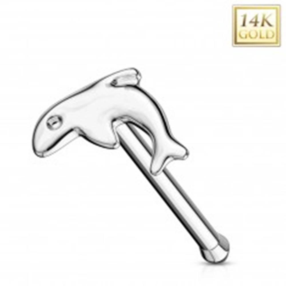 Šperky eshop Rovný piercing do nosa z bieleho zlata 585 - malý lesklý delfín
