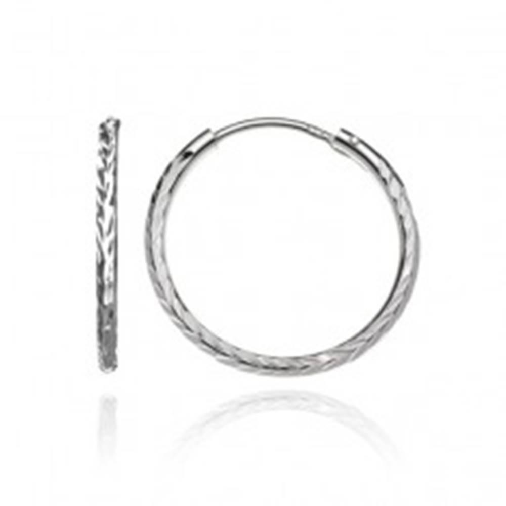 Šperky eshop Okrúhle náušnice zo striebra 925 - vyhĺbené lístky, 19 mm