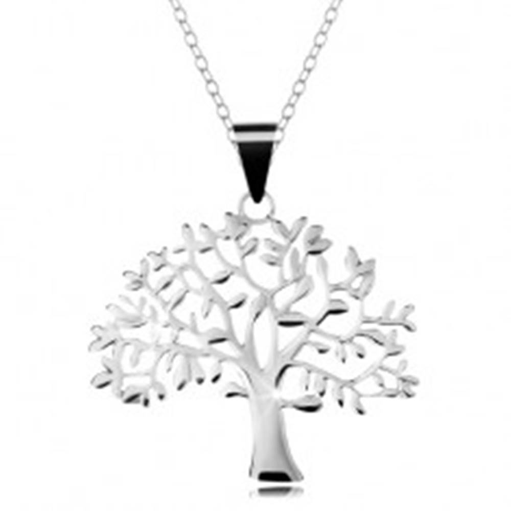 Šperky eshop Strieborný 925 náhrdelník, retiazka a prívesok - veľký košatý strom života