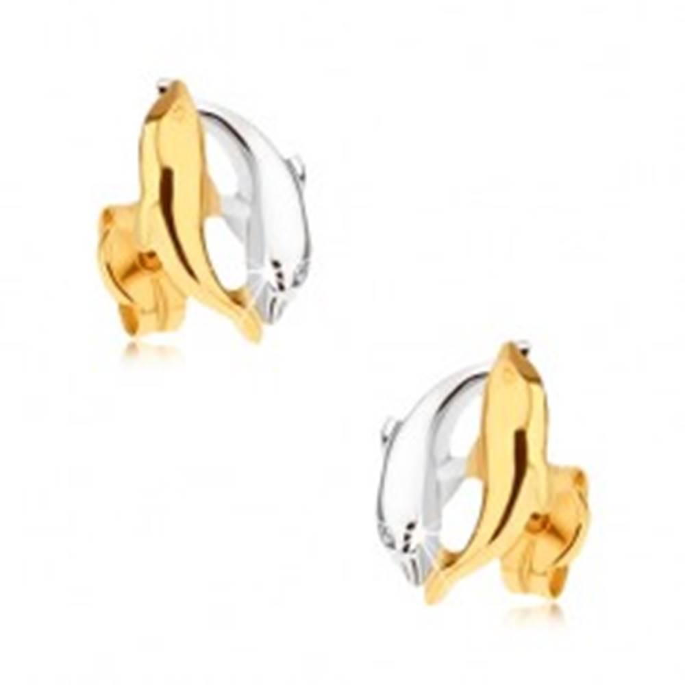 Šperky eshop Ródiované dvojfarebné náušnice v 9K zlate - dva skáčuce delfíny
