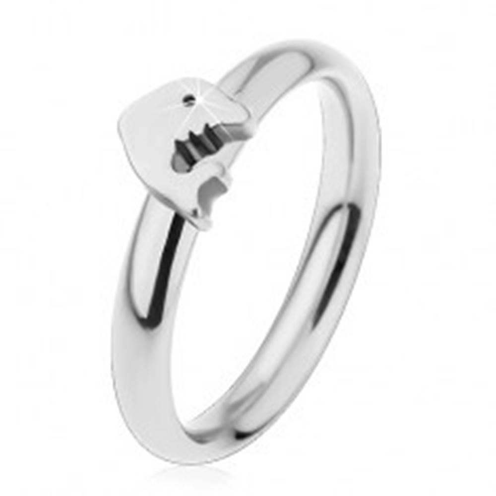 Šperky eshop Prsteň z chirurgickej ocele, strieborný odtieň, malý lesklý delfín - Veľkosť: 44 mm
