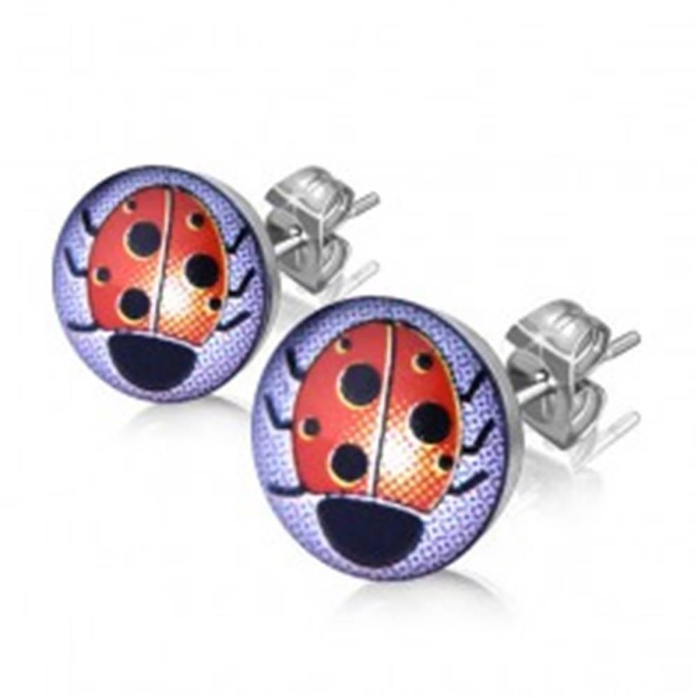 Šperky eshop Puzetové náušnice z ocele, strieborná farba, číra glazúra, lienka
